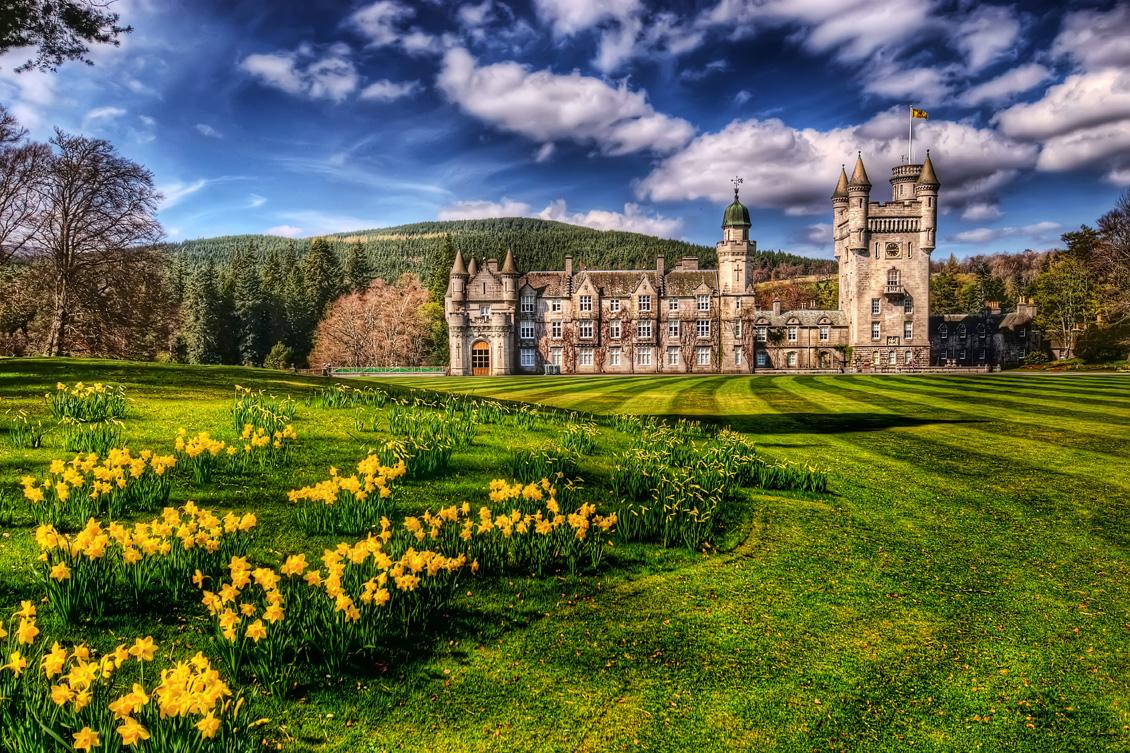 Scotland (Heather)