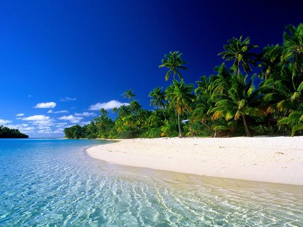 Barbados – Typically Tropical