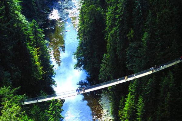 Walk the Capilano Suspension Bridge
