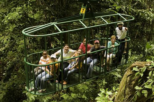Ride the Rainforest Aerial Tram