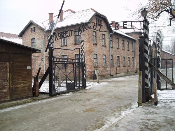 Reflect at the Auschwitz-Birkenau Museum in Oświęcim, Poland