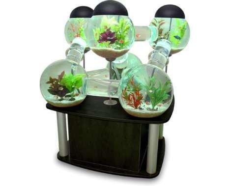 product,food,flowerpot,