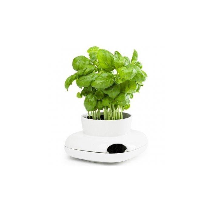 Sagaform Stoneware Herb Pot