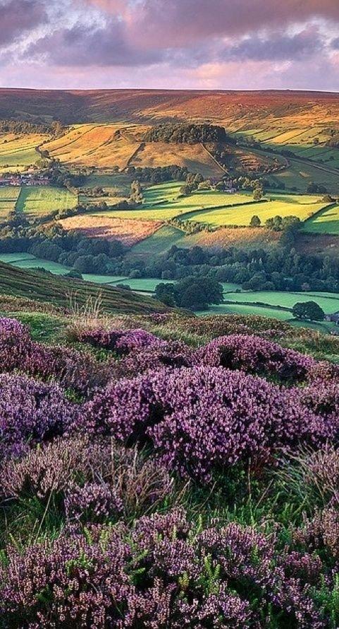North Yorkshire, England