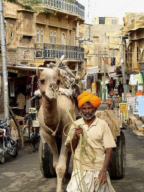 Rajasthan Street Scene