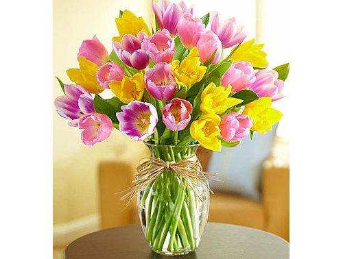 flower, flowering plant, plant, flower arranging, cut flowers,
