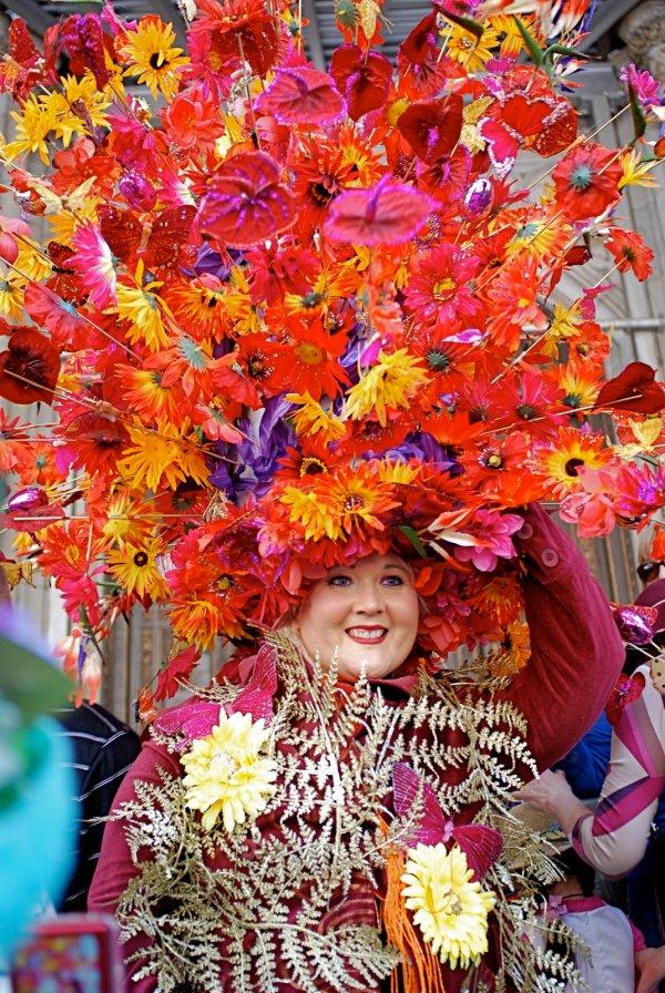 Carnival, Orange, Festival, Event, Plant,
