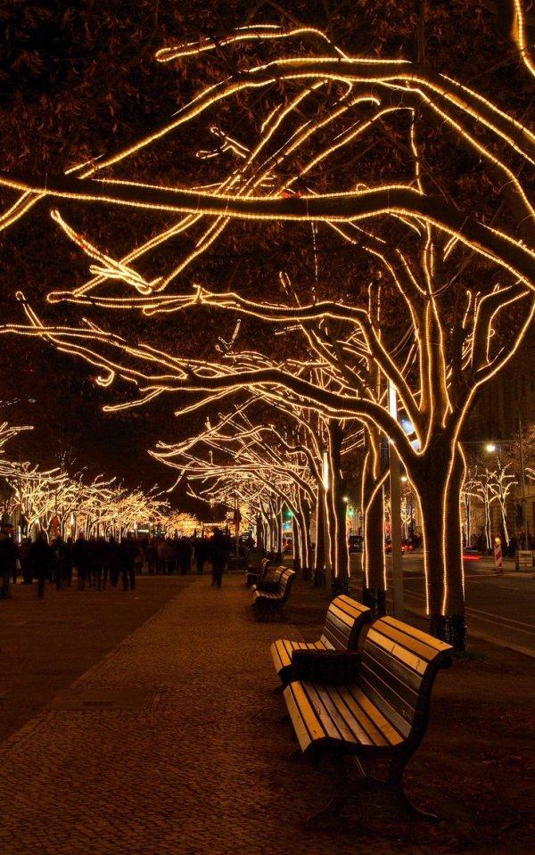 Take a Nighttime Walk Unter Den Linden