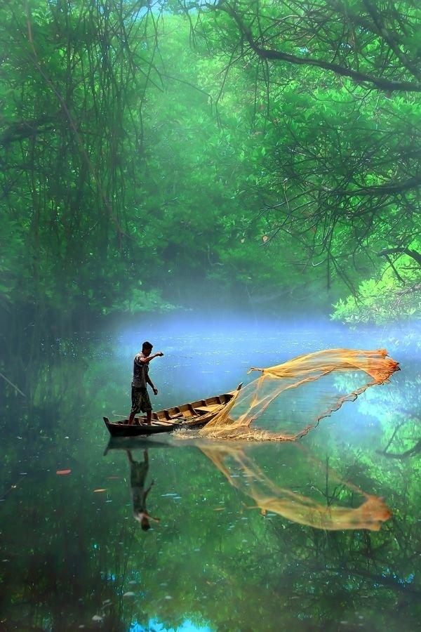 habitat,natural environment,water,river,vehicle,