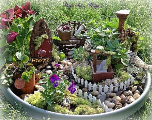 Itty Bitty Fairy Garden