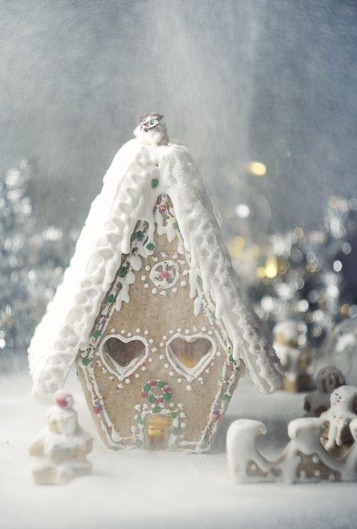 Winter Wonderland House