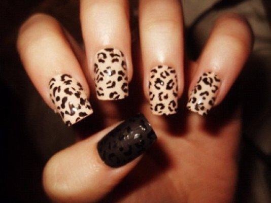 Perfect Cheetah Print