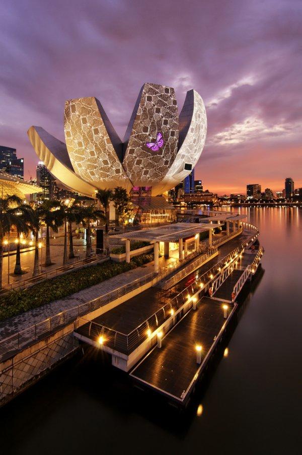 night,landmark,reflection,cityscape,evening,