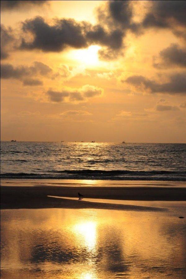 Cavelossim Beach, Cavelossim, India