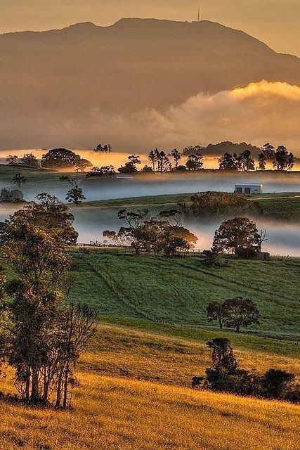 Mount Bellenden Kerr, Queensland, Australia