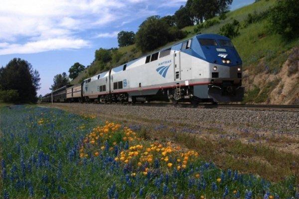 train,transport,land vehicle,vehicle,track,