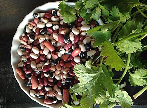 food, produce, plant, vegetable, flower,
