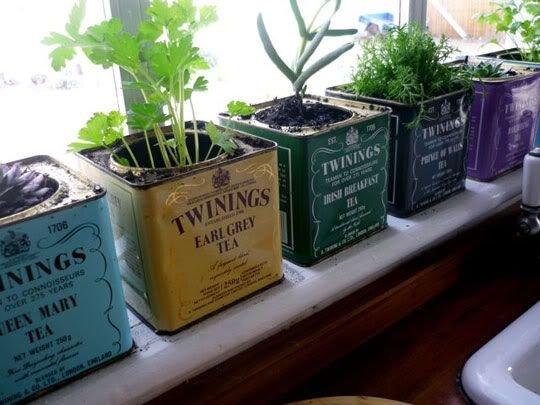 herb,produce,flower,food,NINGS,