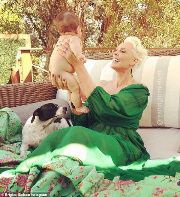 Green, Canidae, Dog, Companion dog, Love,