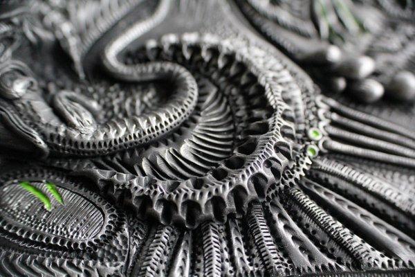 Grey Dragon Detail