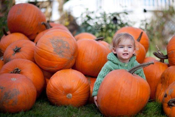 Plumper Pumpkins, Portland, Oregon