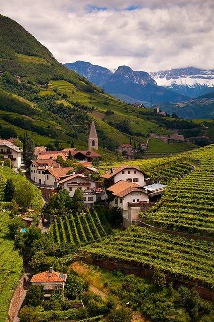 Ritten Vineyards, Austria