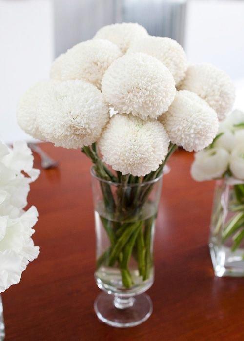flower, flower arranging, flower bouquet, floristry, cut flowers,