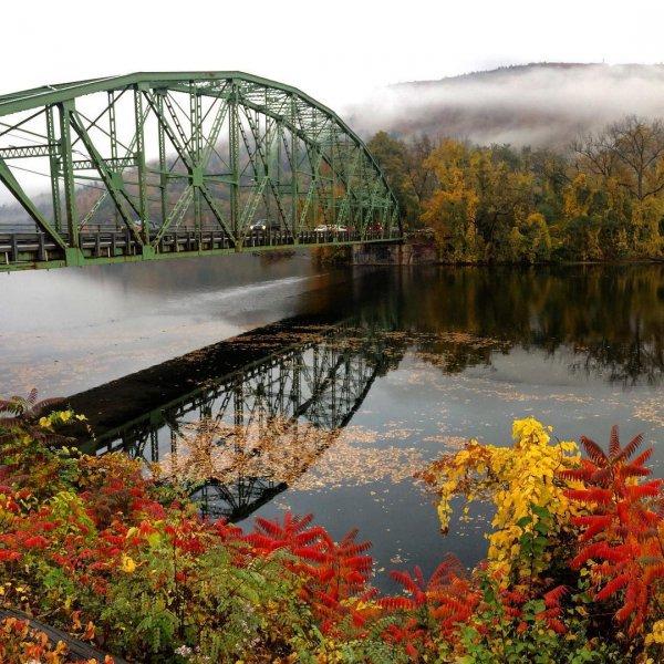 nature, reflection, leaf, bridge, water,