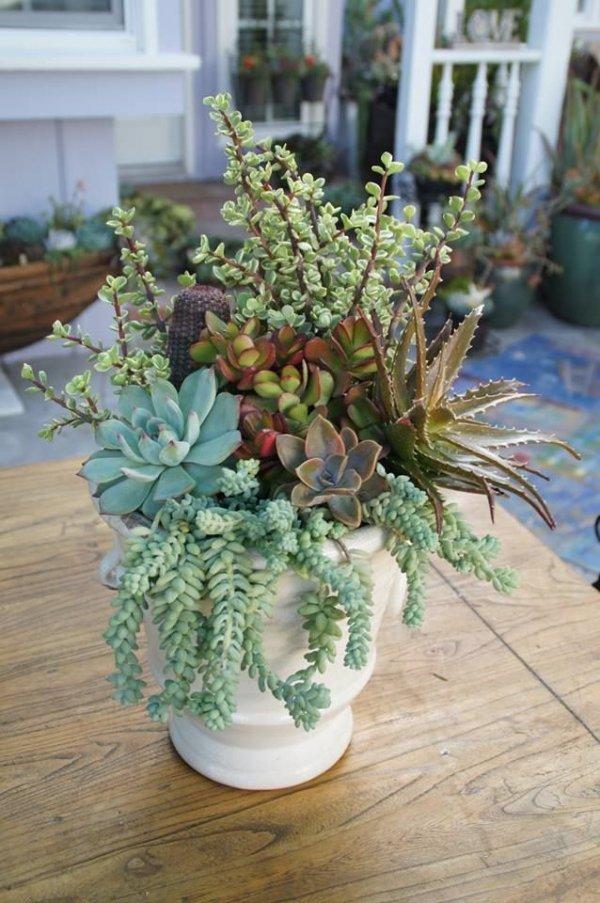 flower arranging,floristry,flower,flora,plant,