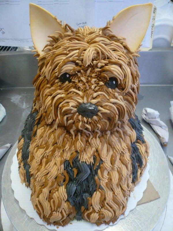 how to make a dog cake easy