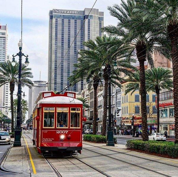 vehicle, tram, land vehicle, metropolitan area, transport,
