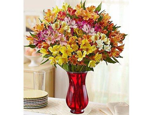 flower arranging,cut flowers,flower,flower bouquet,floristry,