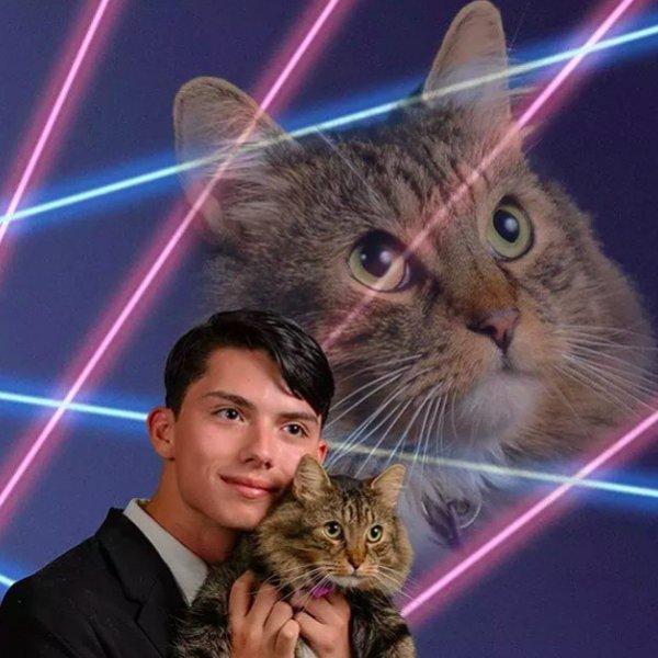 That Cat …