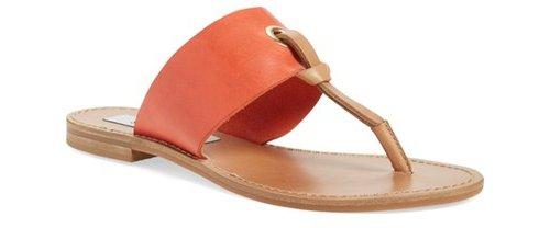 footwear, color, fashion accessory, sandal, tan,