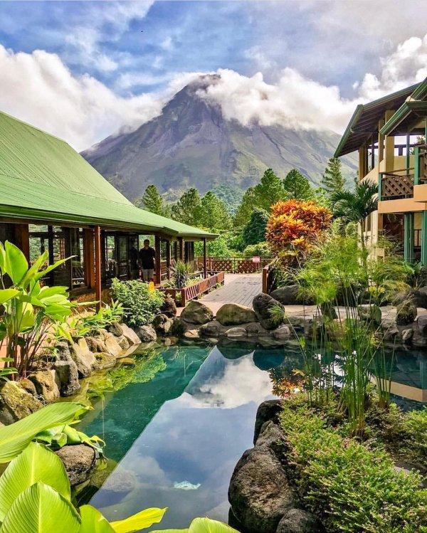 nature, property, resort, vegetation, estate,