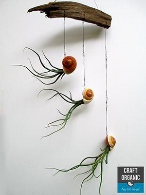 branch,twig,flower,art,leaf,