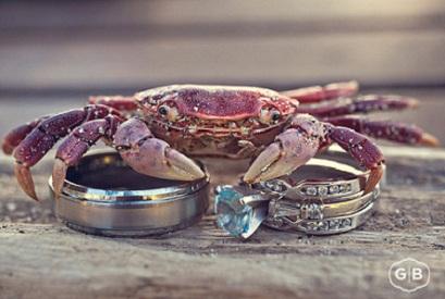 Summertime Crabs...