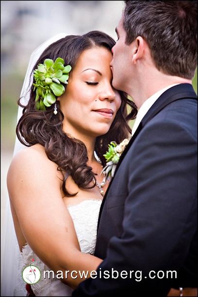 Succulent Love...