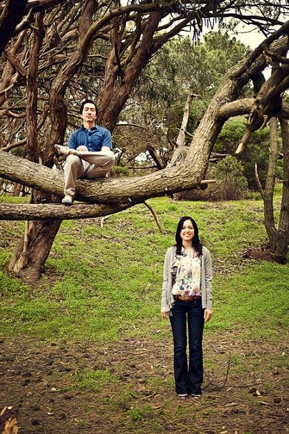 Go Climb a Tree...