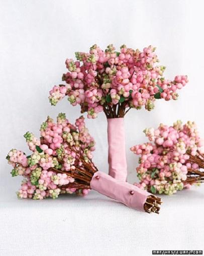 Pink Snowberries...