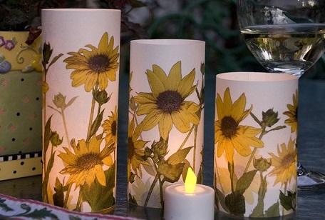 Glowing Flowers...