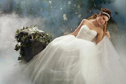 Cinderella Ballgown...