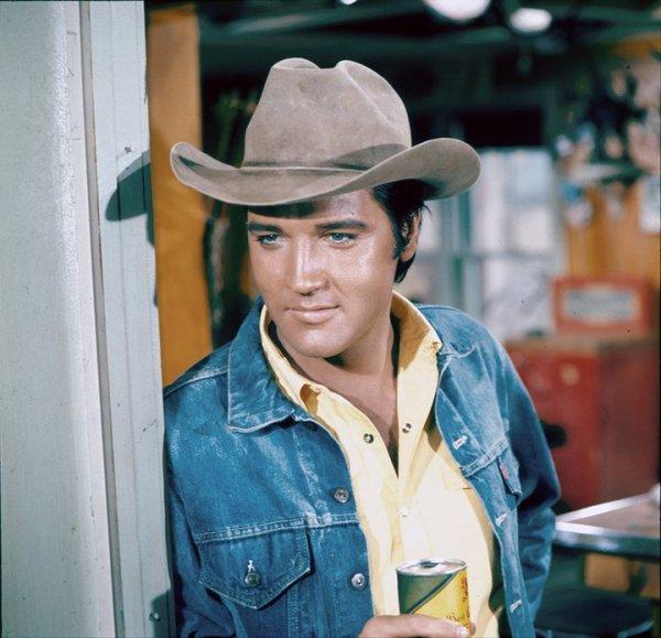 Clothing, Hat, Cowboy hat, Cool, Fashion accessory,