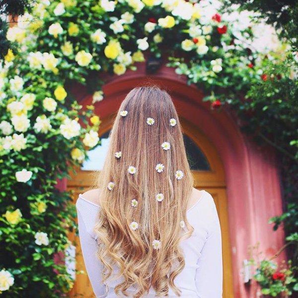flower, arch, rVs,