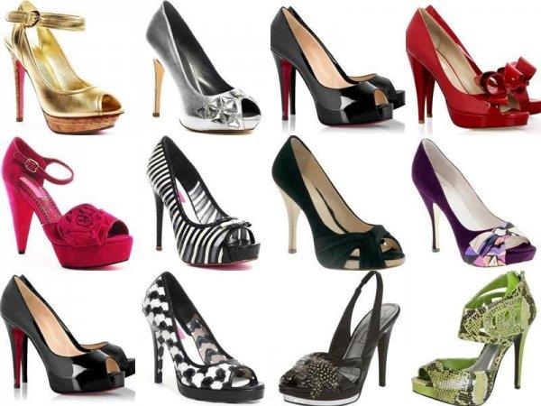 Step into the Shoe Craze!