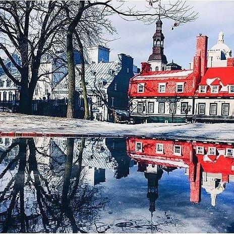 town, landmark, winter, tree, snow,