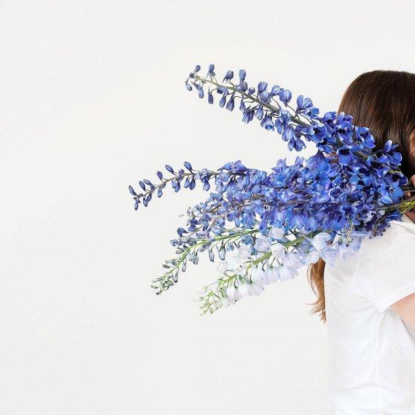 flower, blue, plant, flower bouquet, floristry,