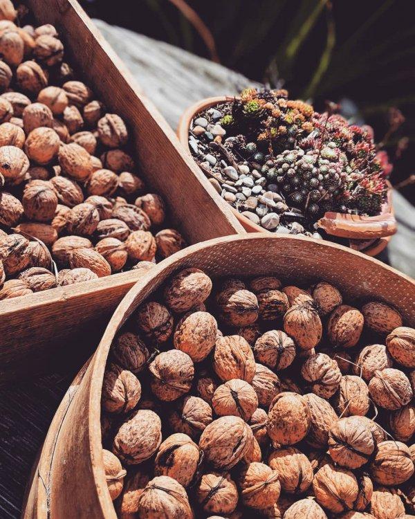 tree nuts, food, walnut, nut, dried fruit,