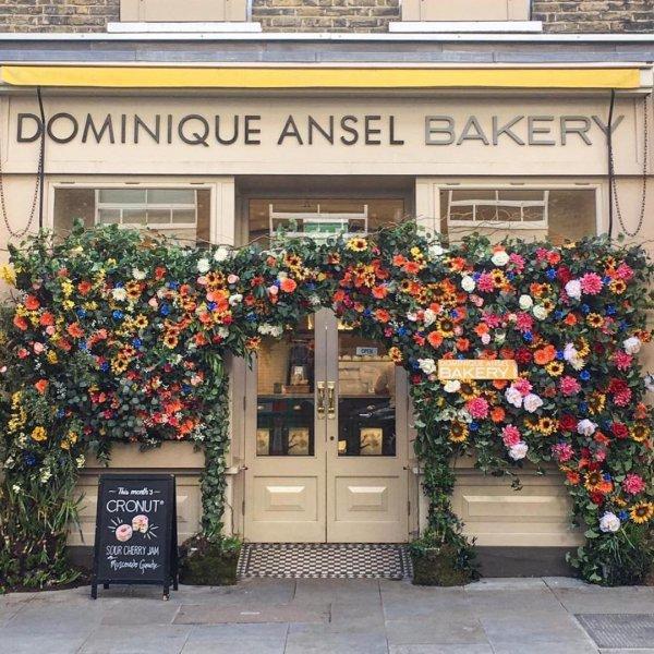 floristry, flower, plant, facade, window,