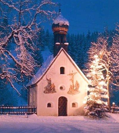 Christmas Tree in Germany's Karwendel